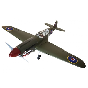 Curtiss P- 40N Warhawk -  Shark head -  SEA- 250S-radio-controlled-planes-and-gliders-Hobbycorner